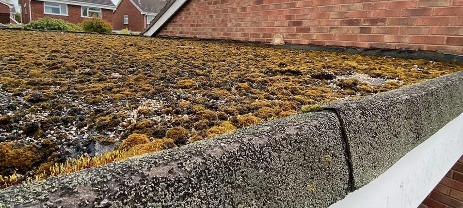 Think you might need a new flat roof? Here are the signs you need to look for…